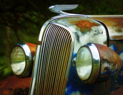 Vintage Cars- Wings