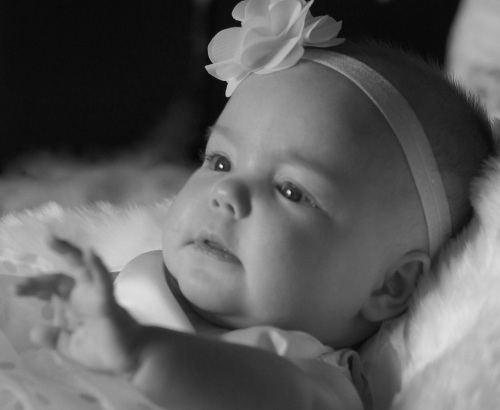 Baby/Newborn photography