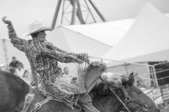 Virginia O'Keeffe Rodeo Photographer