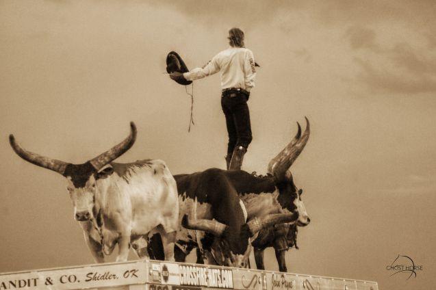 One-Armed Bandit -Rodeo de Santa Fe